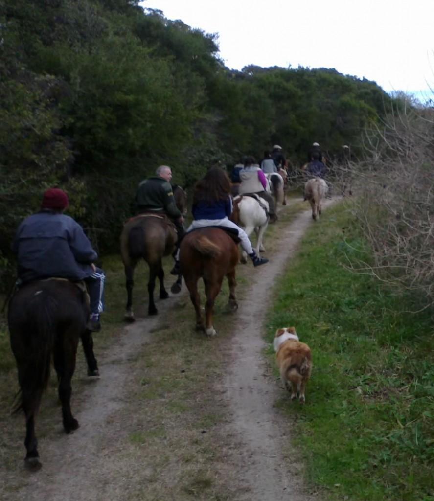paseo a caballo por punta indio