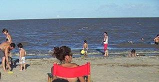 temporada 2010 Punta Del Indio