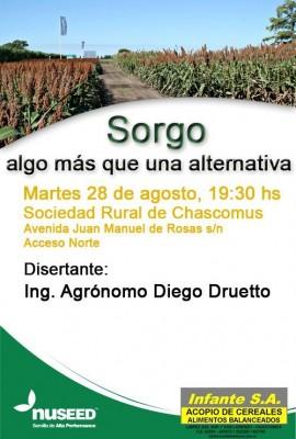 Cultivo del Sorgo en Buenos Aires
