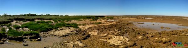Piedras playa Punta Piedras