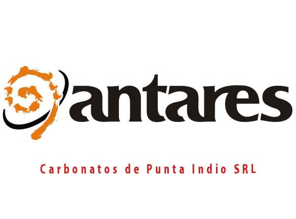 Pinturas Antares Punta Indio