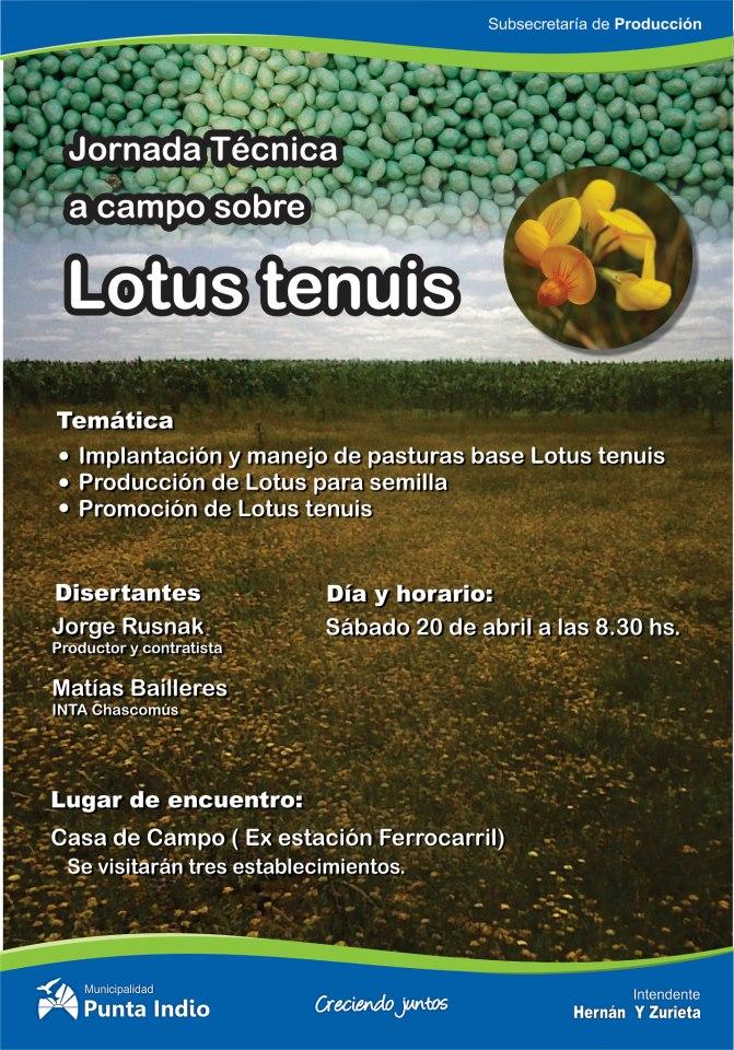 seminario lotus