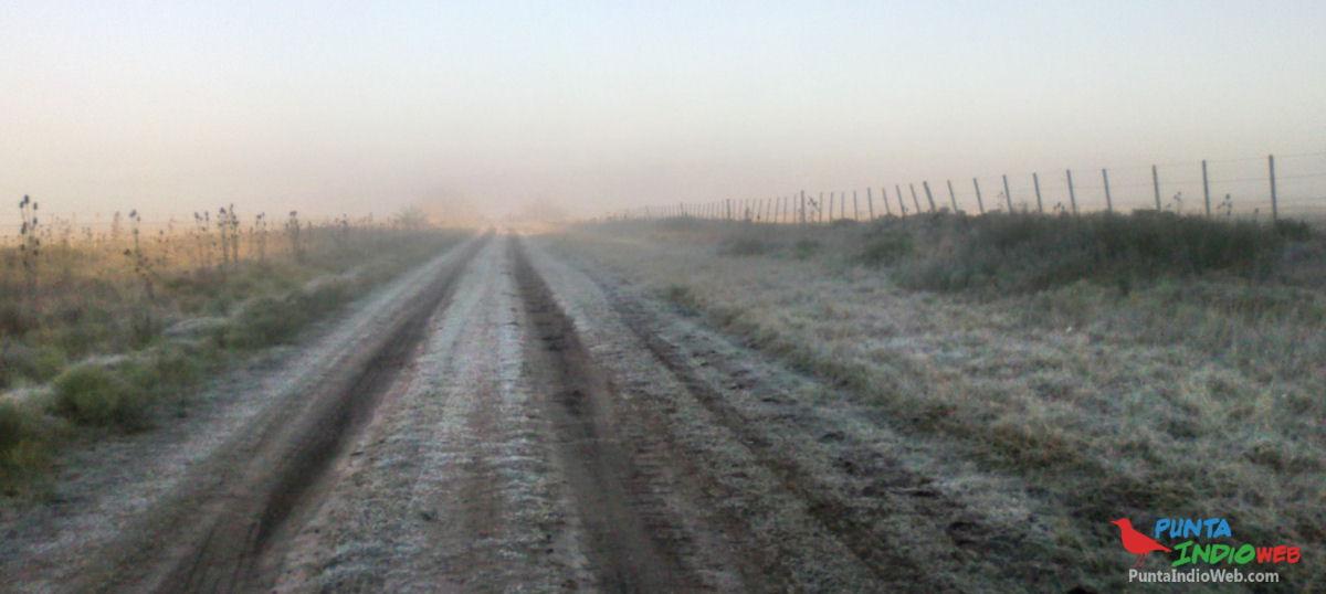 Helada en camino rural