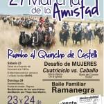 Afiche Marcha de la Amistad 27