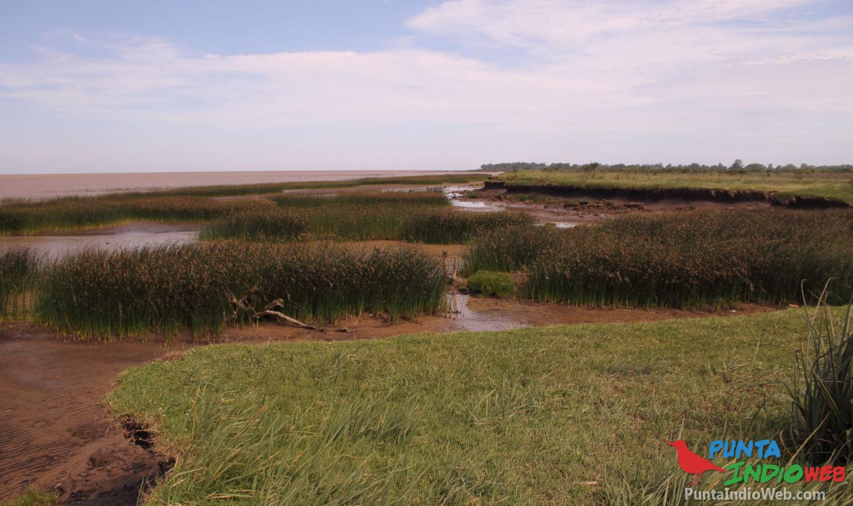 desembocadura arroyo villoldo 4