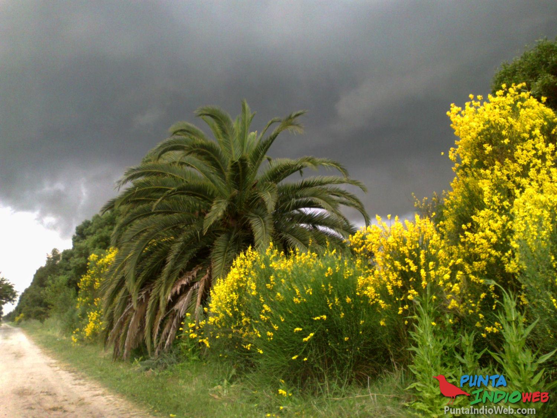 tormenta sobre Verónica