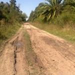 circunvalacion 5ta veronica caminos rurales 2