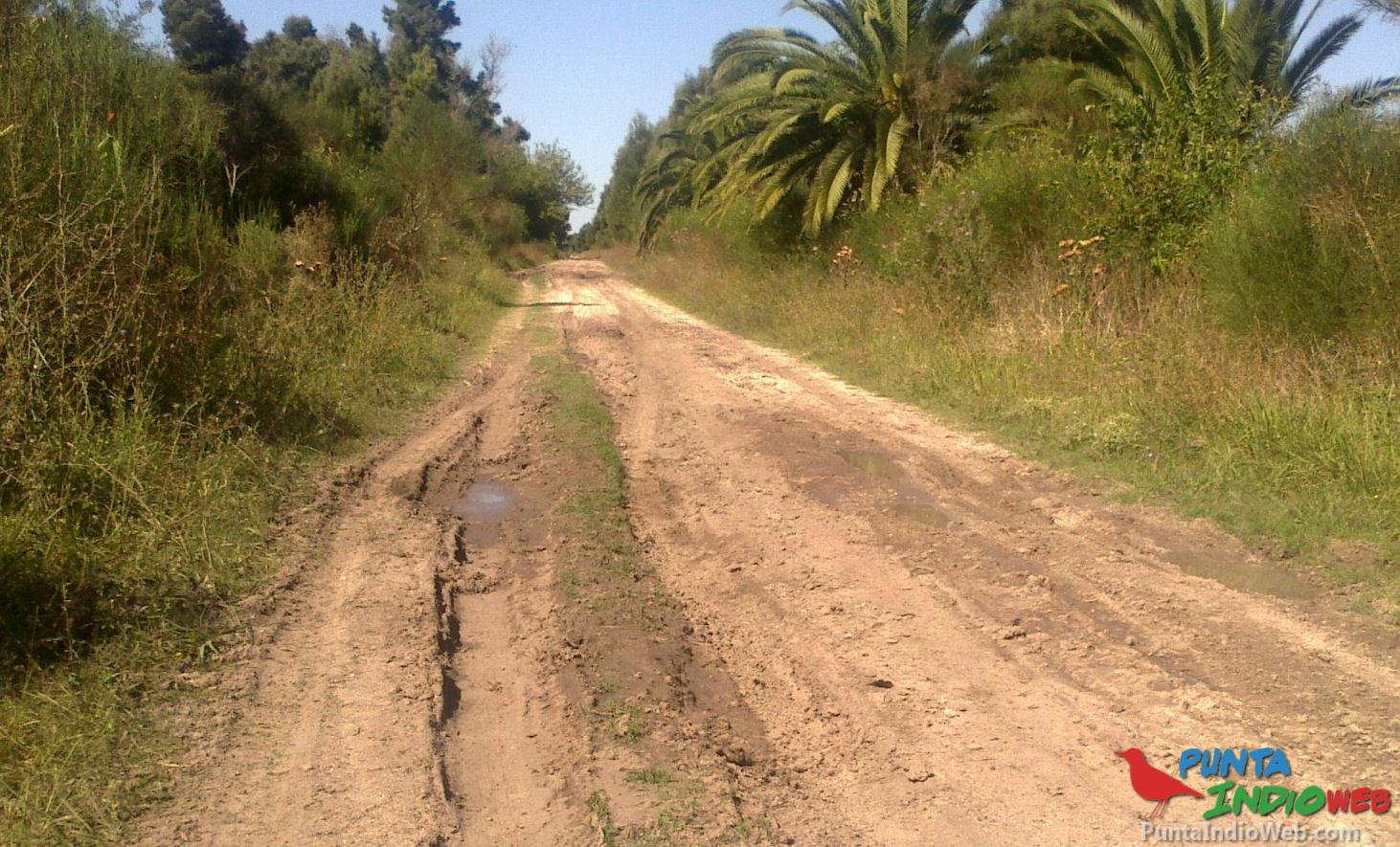 circunvalacion 5ta verónica caminos rurales 2