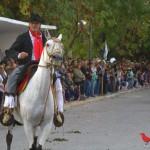 Desfile del Centenario Veronica 27