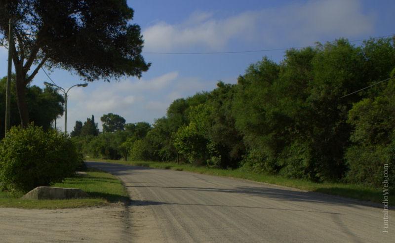 Encuesta: ¿Estas de acuerdo con que se asfalte la Ruta 11?