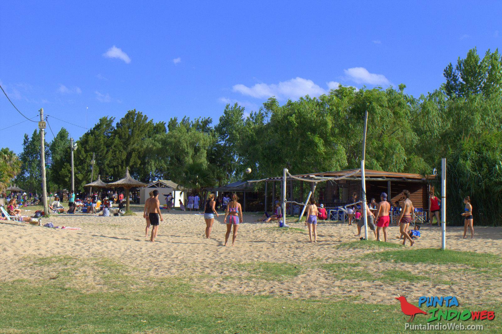 Pasaron los camalotes y volvió la playa a Punta del Indio